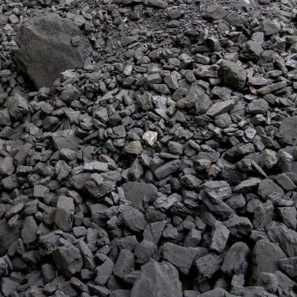 Купить уголь марки ДГ 25-200 (цена за 1 тонну) | ICOAL - продажа твердого топлива